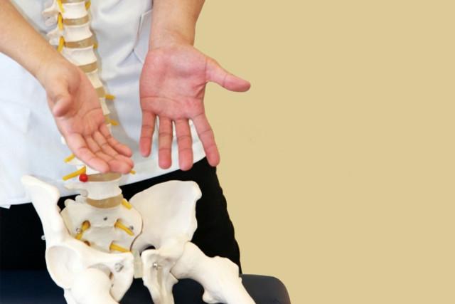 戸田で骨盤矯正にご興味のある女性・腰痛などにお悩みの男性へ
